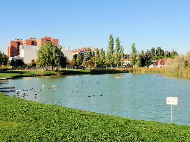 Lago de Laguna de Duero